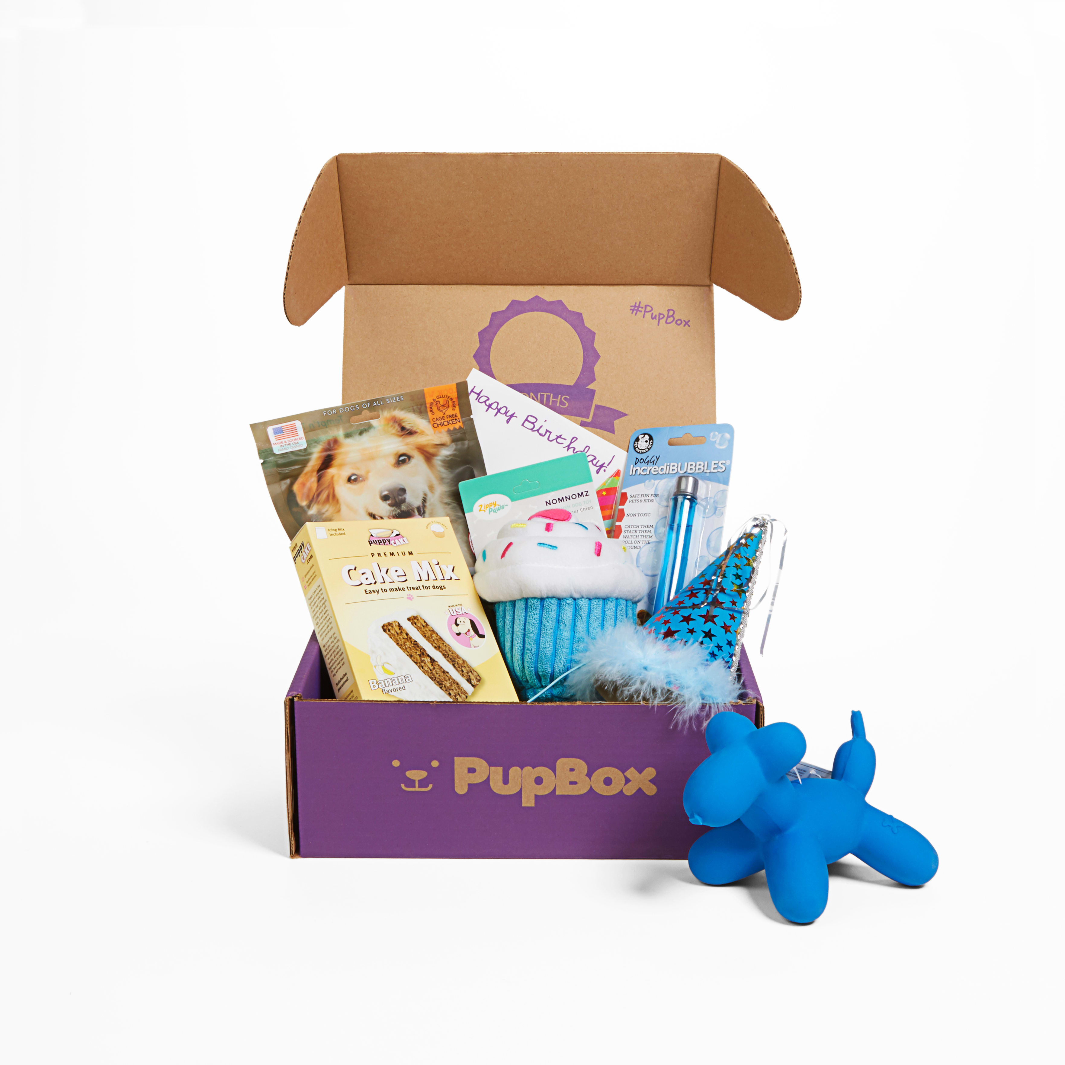Incredible Birthday Boy Puppy Dog Subscription Boxes Pupbox At Petco Personalised Birthday Cards Arneslily Jamesorg