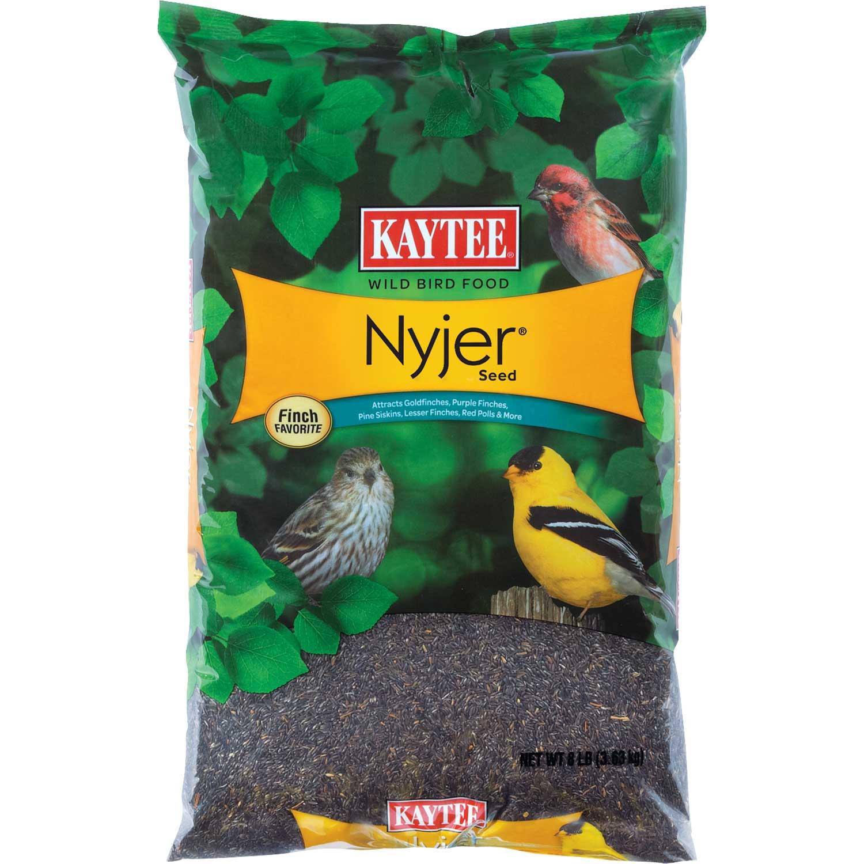 Kaytee Thistle Seed Wild Bird Food Petco,Bread Storage