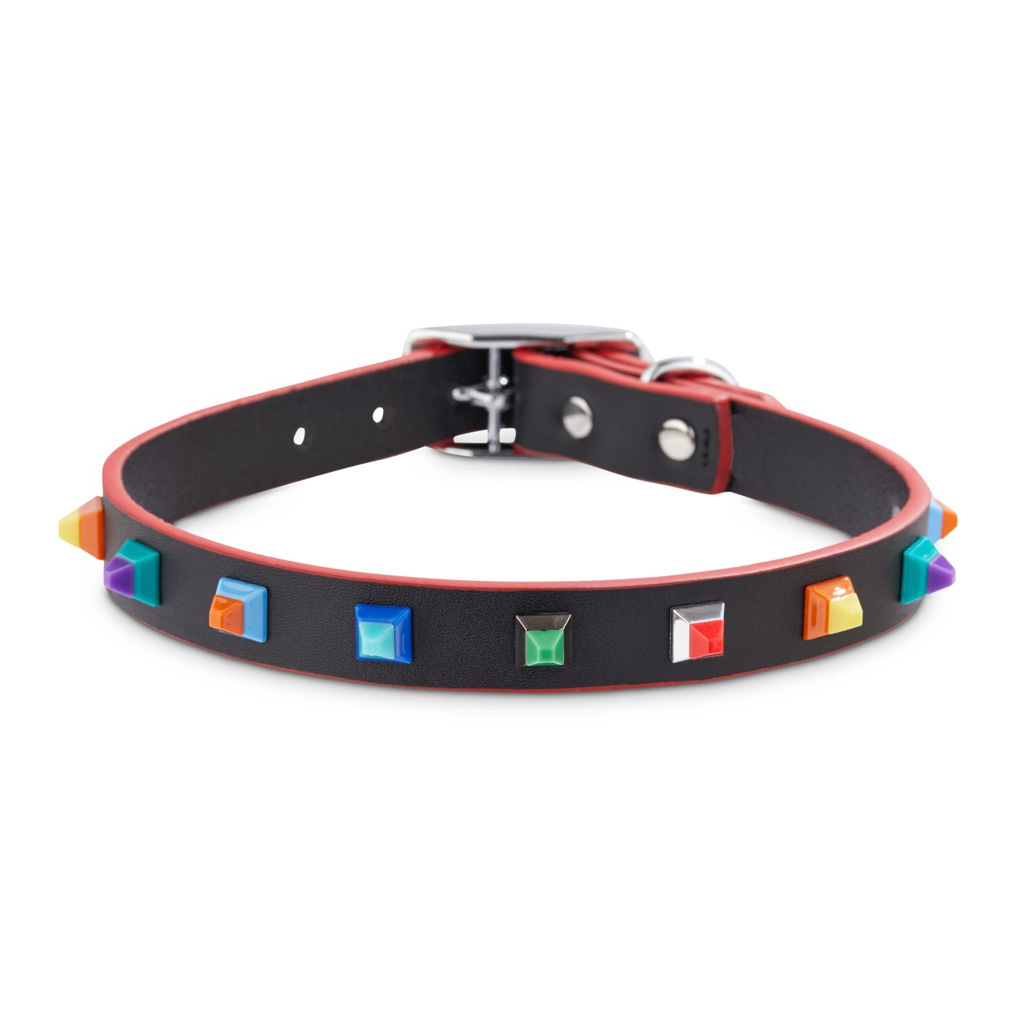 Bond Co Designer Stud Dog Collar Small Petco