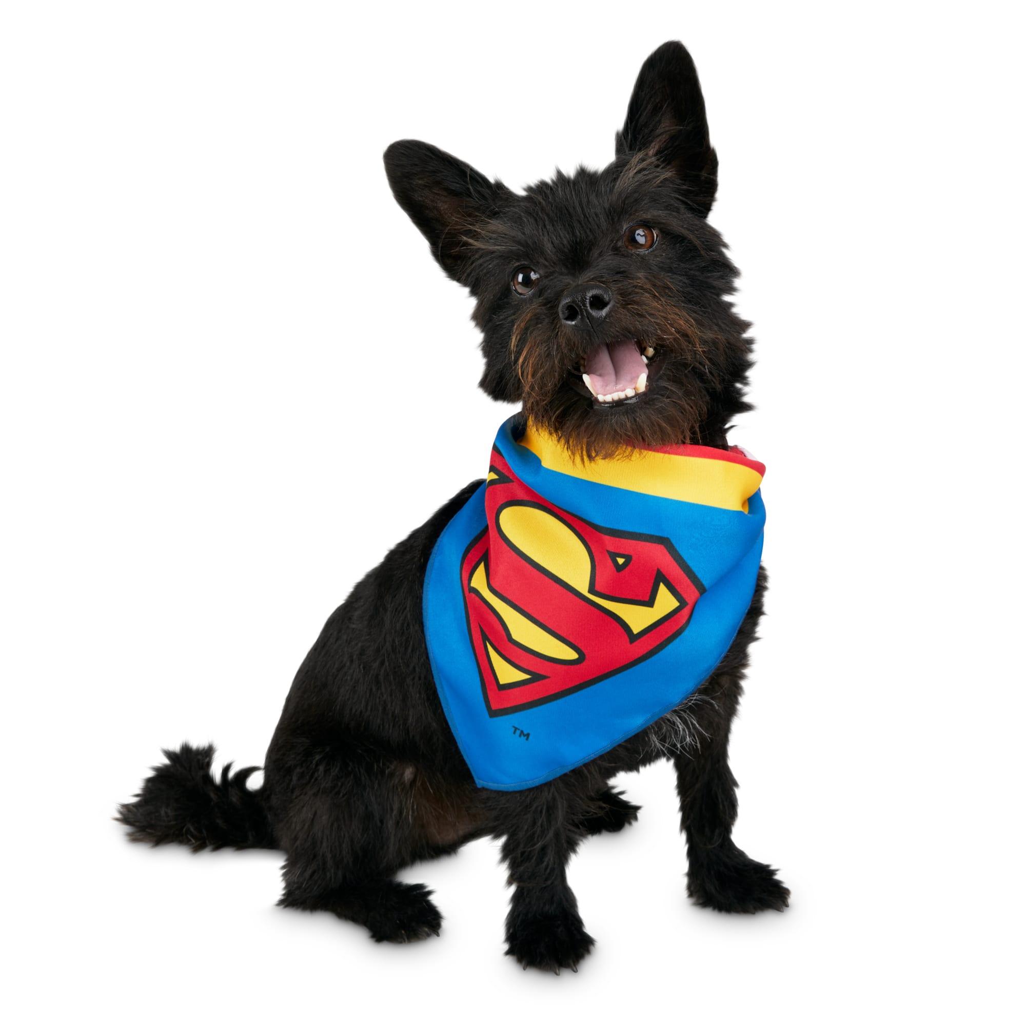 Dc Comics Justice League Superman Dog Bandana Small Medium Petco