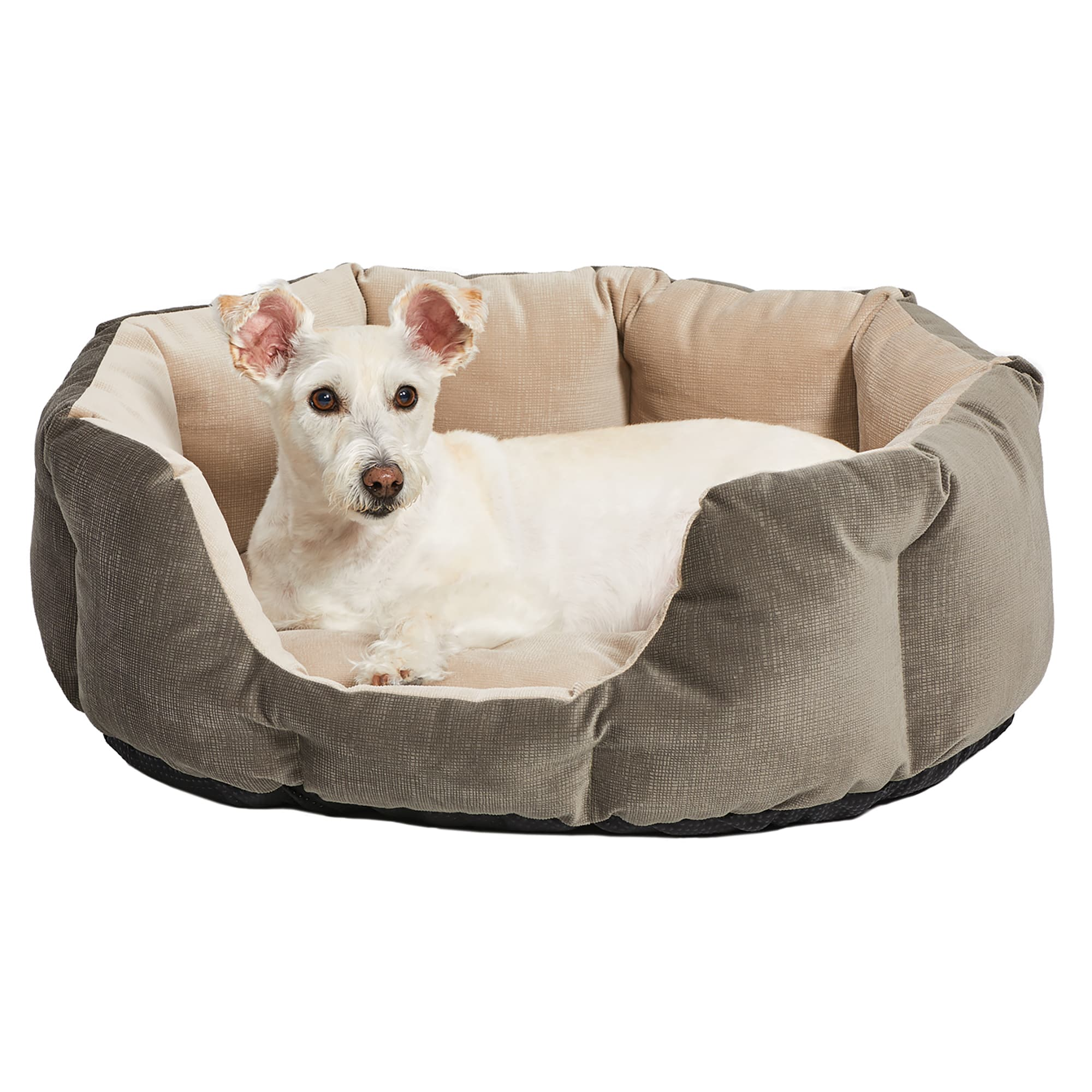 Dog Bean Bag Bed Goldenacresdogs Com
