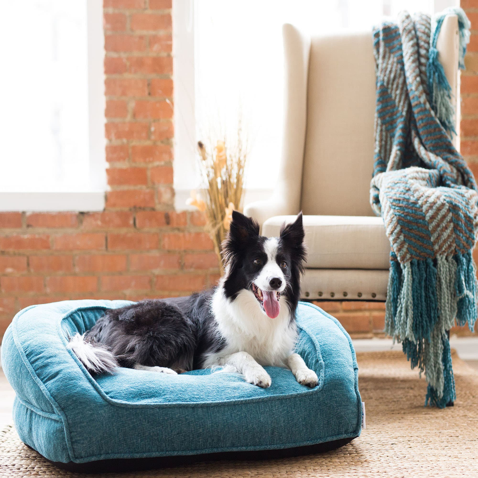 La Z Boy Tucker Sofa Caribbean Pet Bed 33 L X 30 W Petco