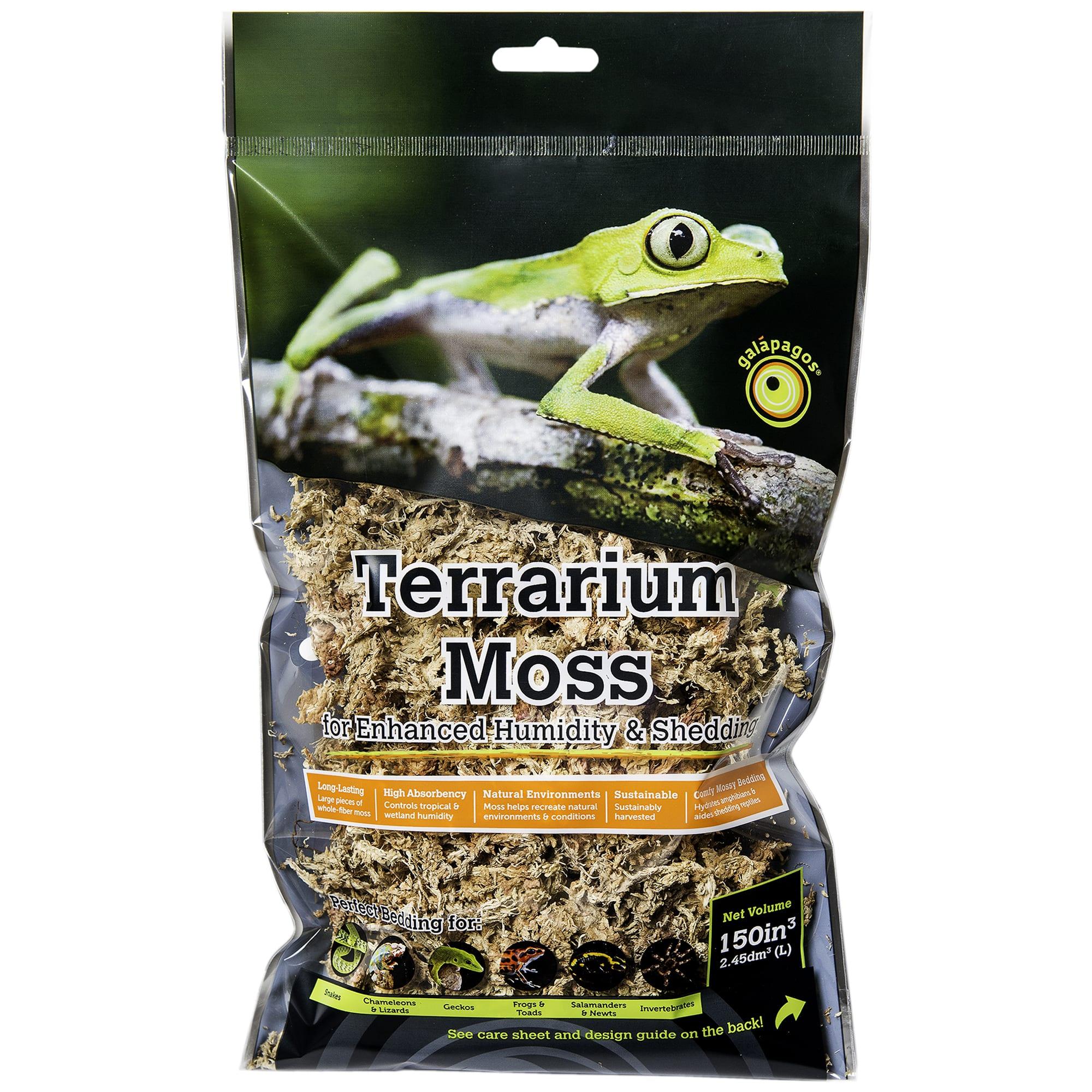 Galapagos Terrarium Sphagnum Moss Golden 150 Cubic Inch Petco