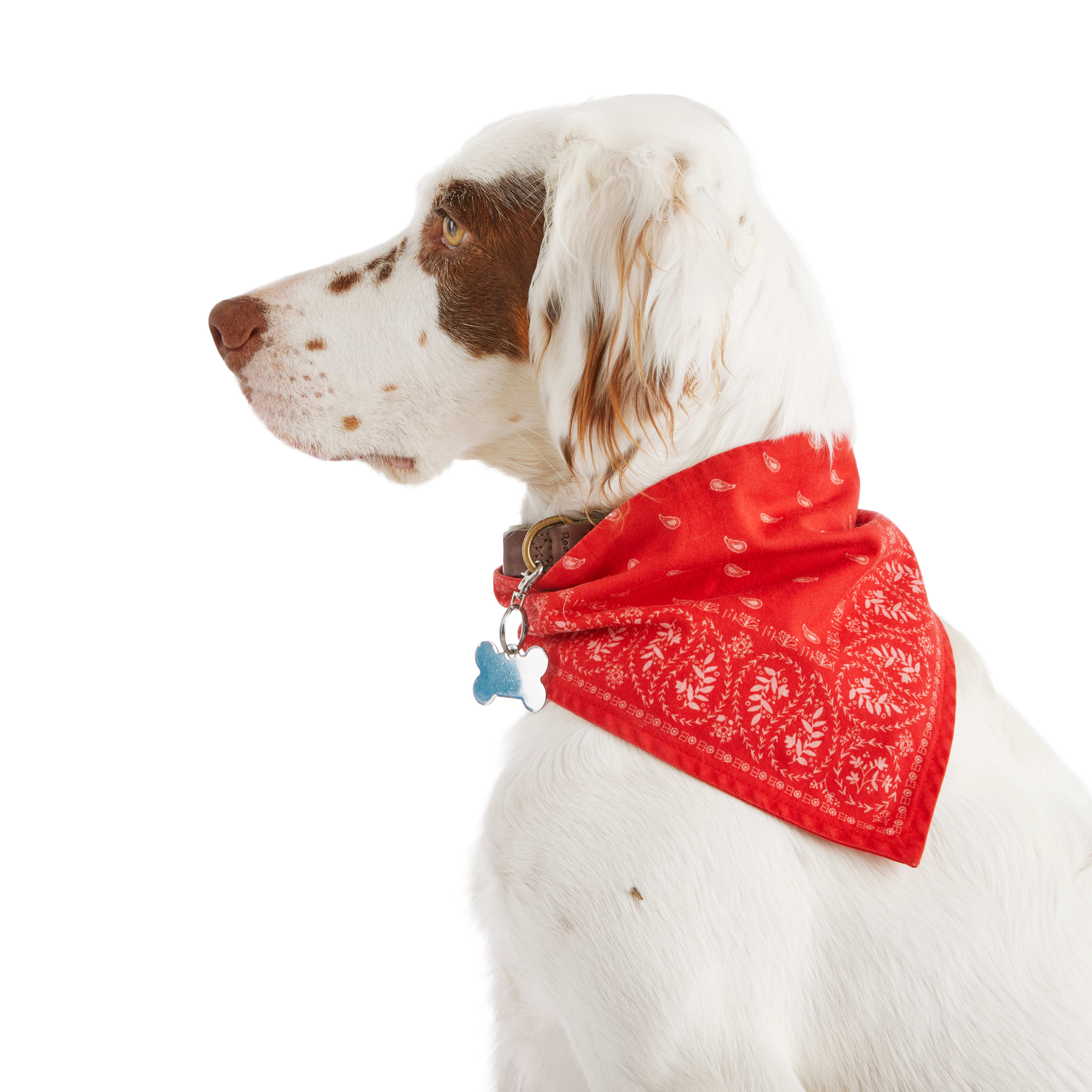 Boy Dog Bandana Dog Bandana Pet Bandana Over the Collar Dog Bandana Rocket Dog Bandana