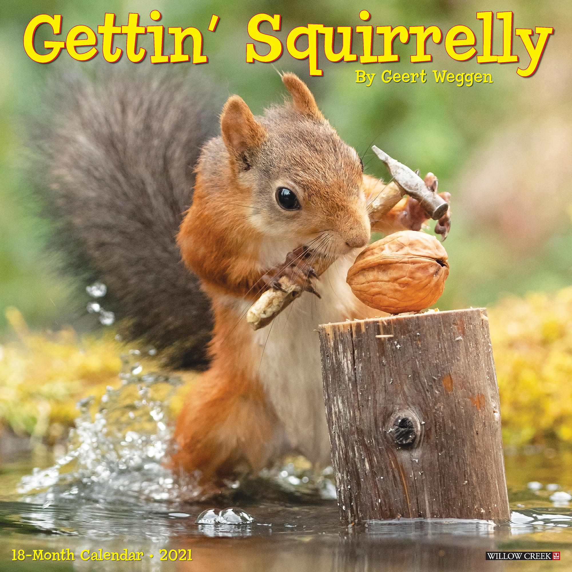 Willow Creek Press Gettin' Squirrelly 2021 Calendar, Large | Petco