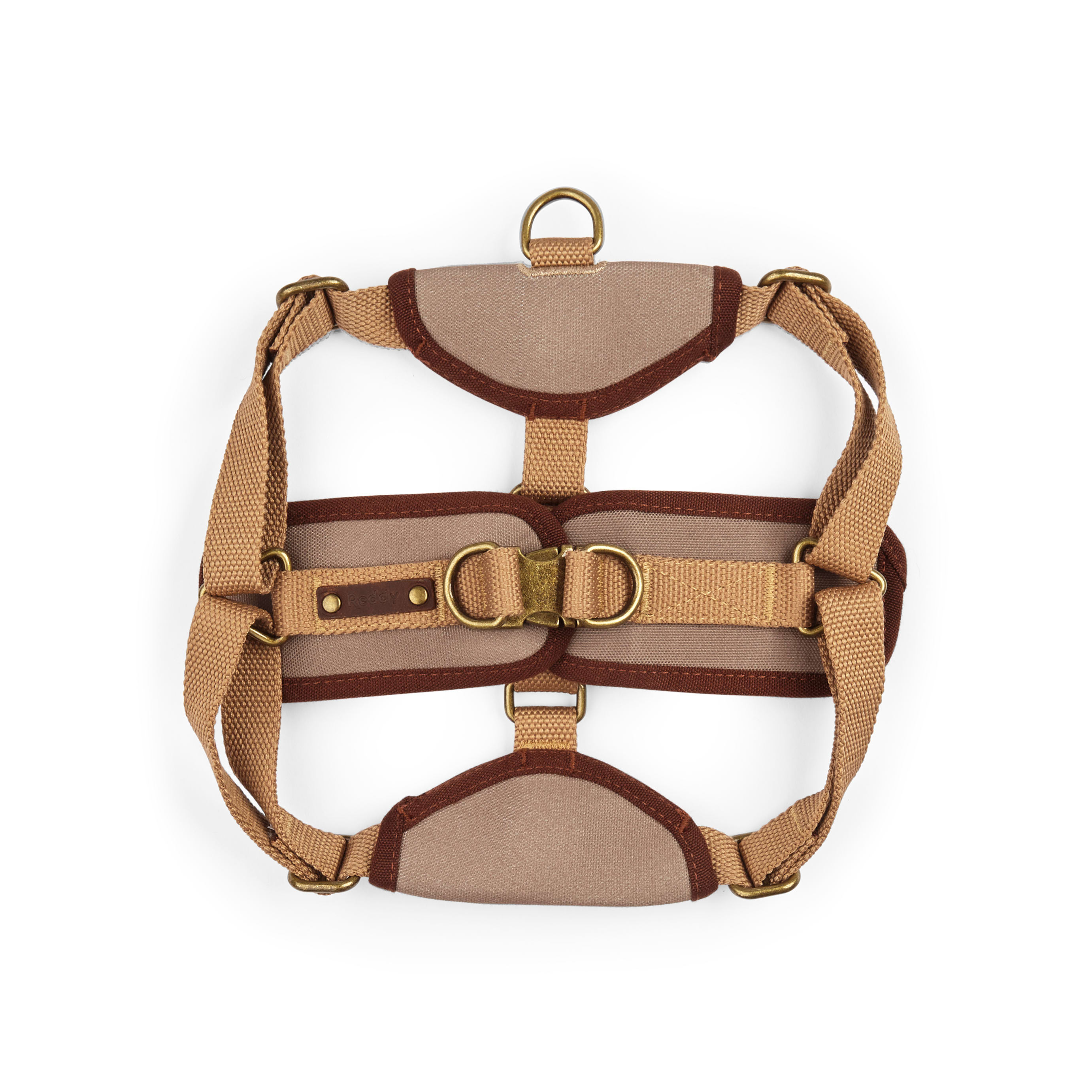 Leather Show Number Harness Adult Small//Medium Brown