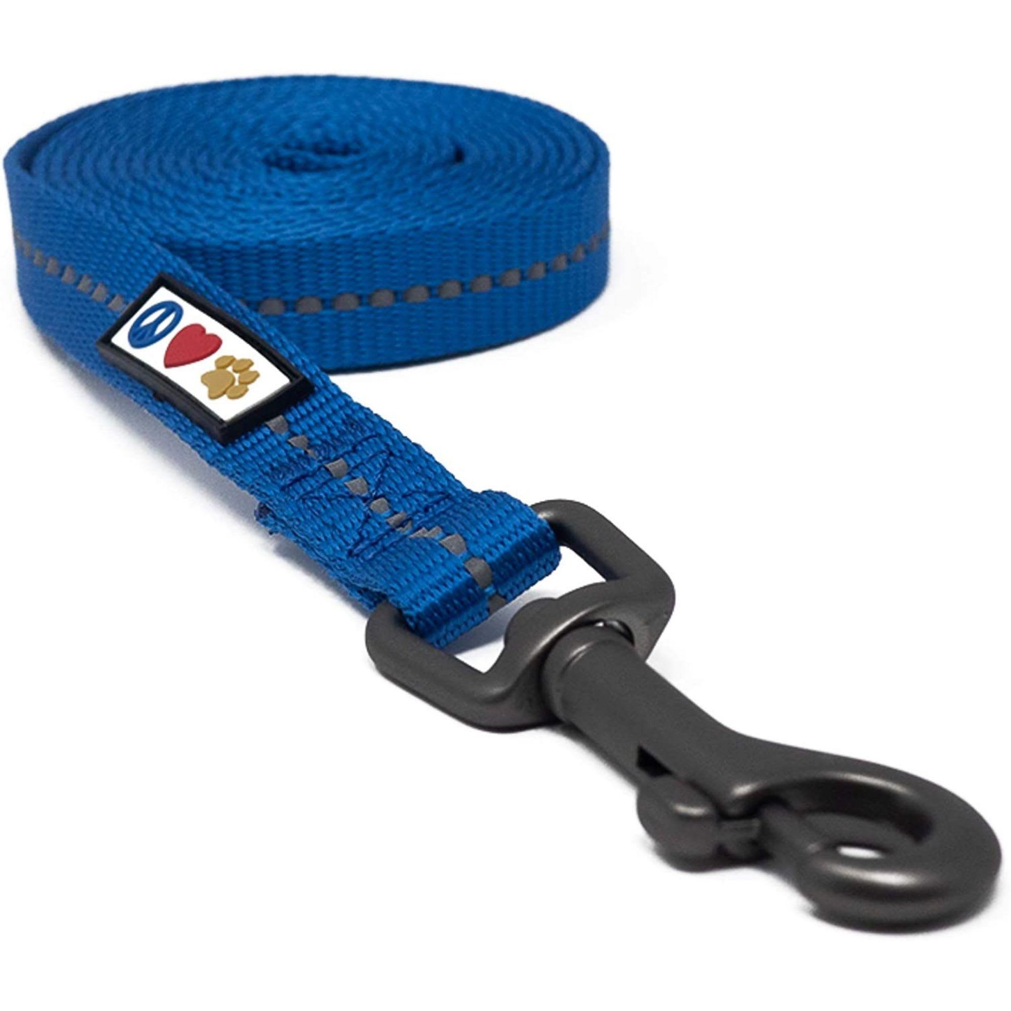Pawtitas Blue Reflective Dog Leash, X-Small/Small | Petco