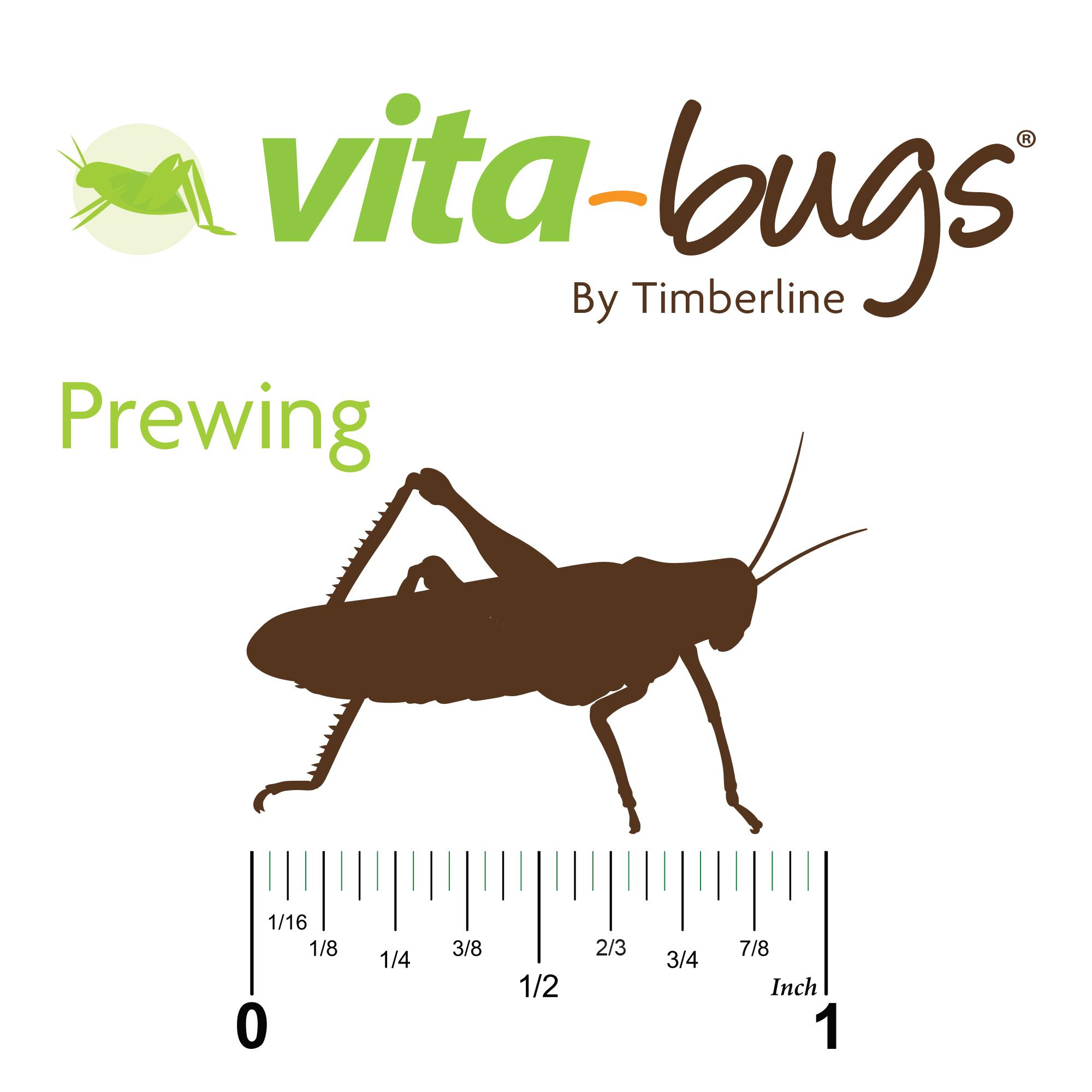 Vita Bugs Prewing Live Crickets, Count of 12