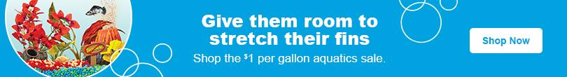 shop Petco's dollar per gallon sale