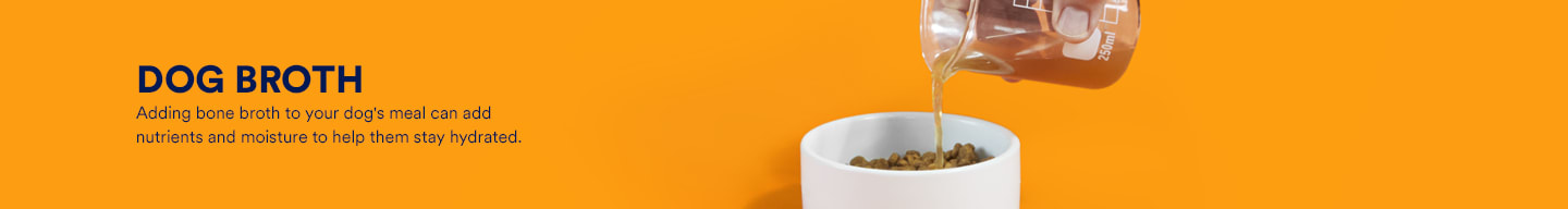 Dog broth. Adding bone broth to your dog's meal can add nutrients and moisture to help them stay hydrated.