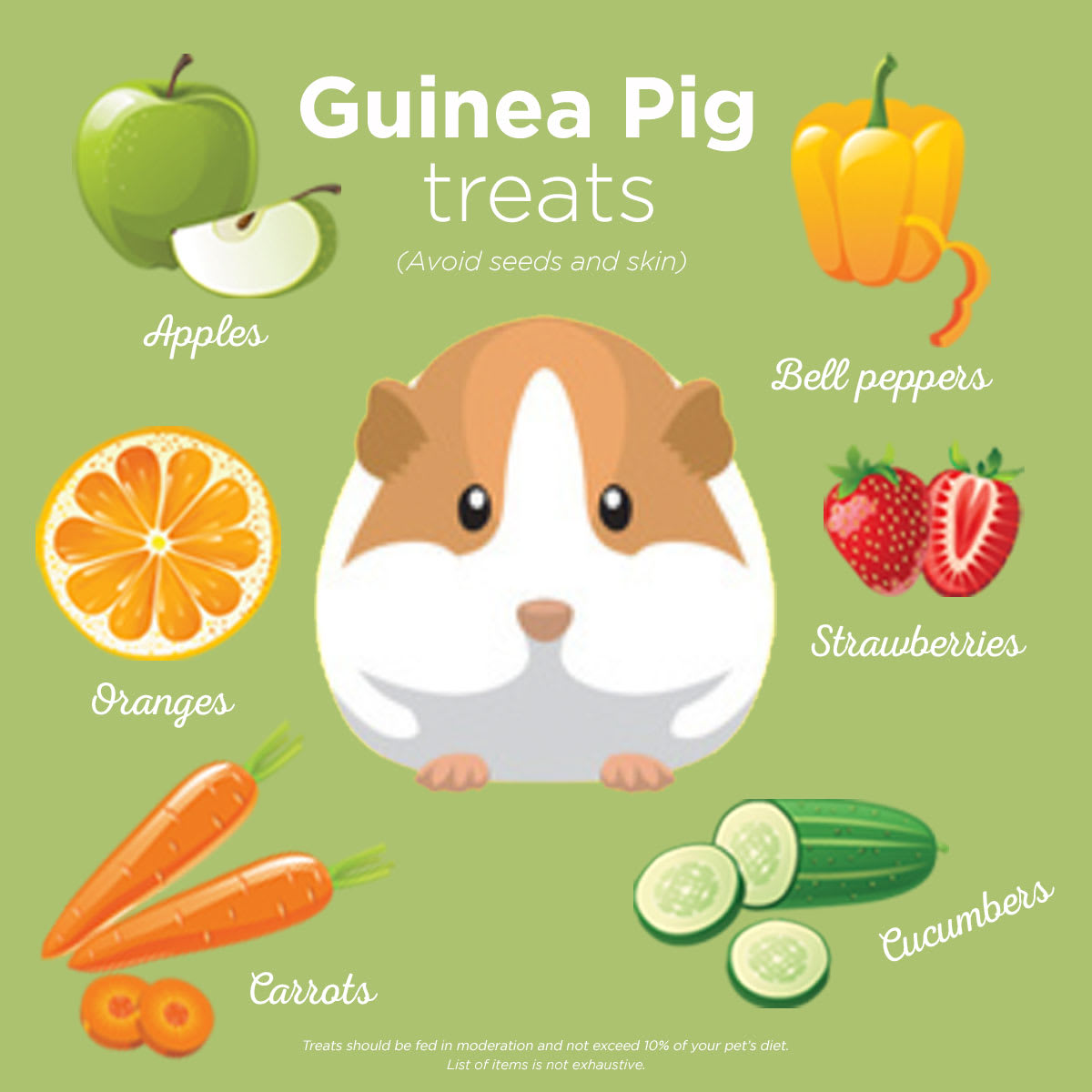 fruits and vegetables guinea pigs can eat
