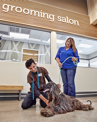 7 Questions To Prepare For Your Pet S First Visit To A Grooming
