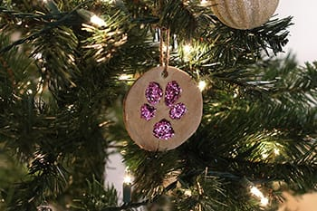 hanging paw ornament image