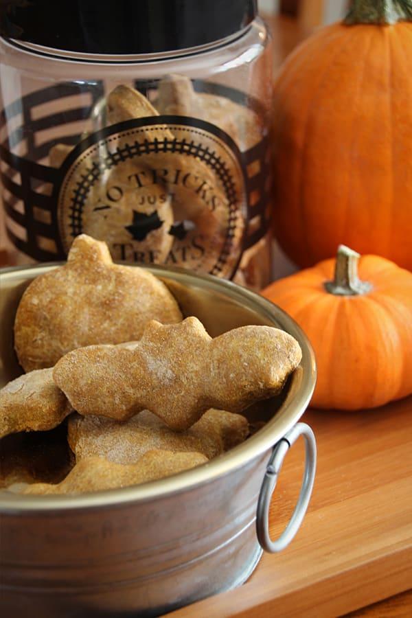 Halloween DIY dog treats