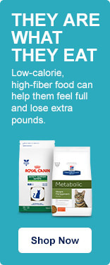 They Are What They Eat. Low-calorie, high-fiber food can help them feel full and lose extra pounds. Shop Now