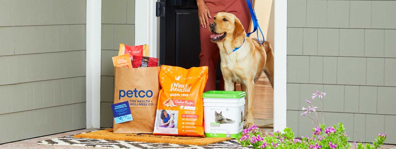 Woman and Yellow Labrador Retriever answer door to receive a Petco order.